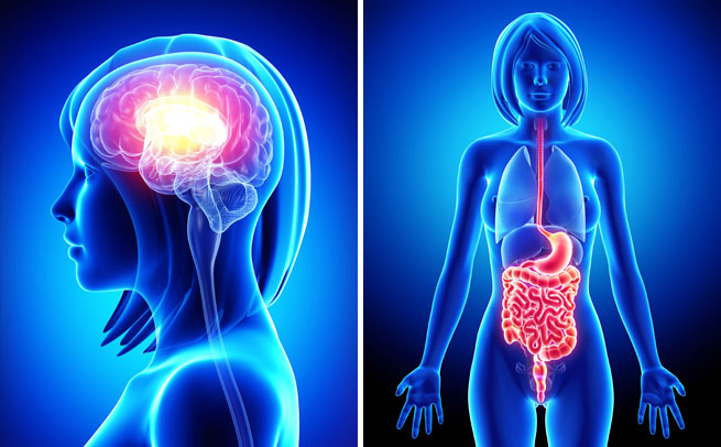 imbunatatirea tranzitului intestinal in stransa legatura cu motivatia
